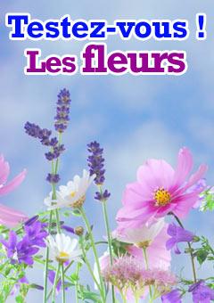 Exercice : Les fleurs